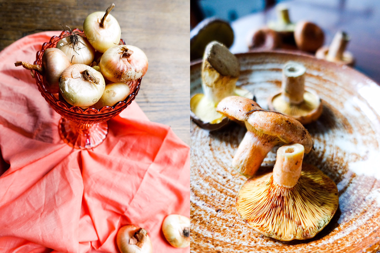 cipolline-wild mushrooms-italy on my mind