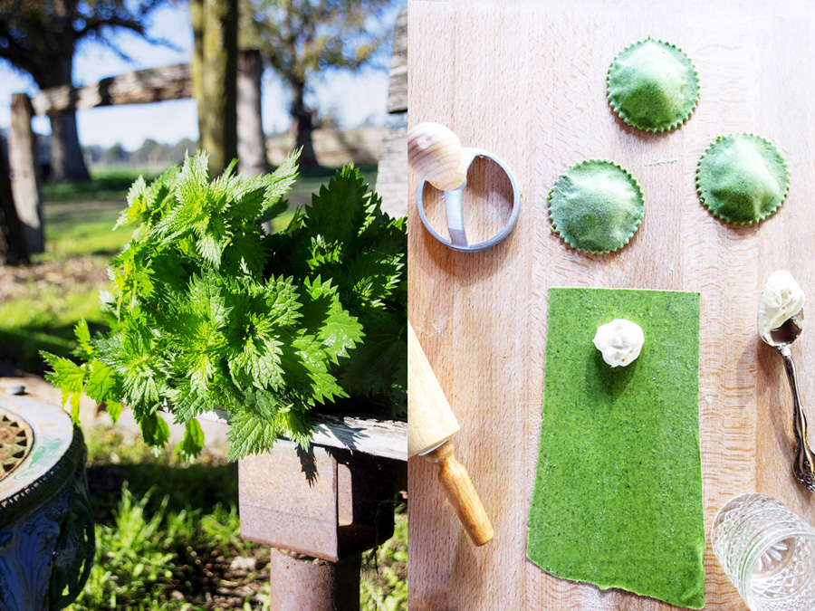 nettles and green goats cheese ravioli-italy on my mind