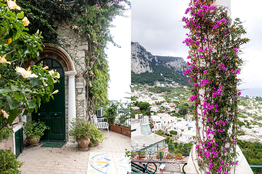 flowers-terrace-capri